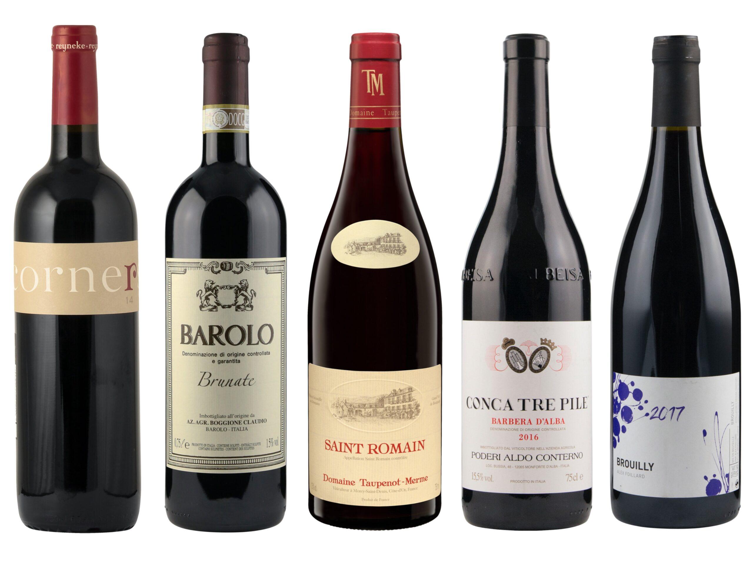 Vintips – Røde viner – 250 til 500 kroner