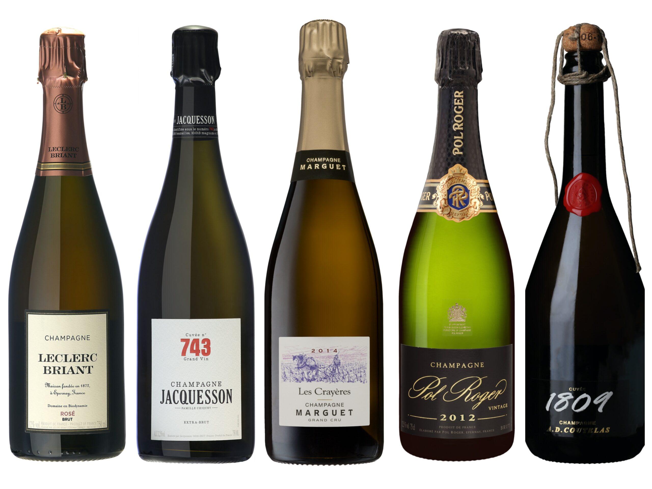 Vintips – musserende viner – 500 til 1000 kroner