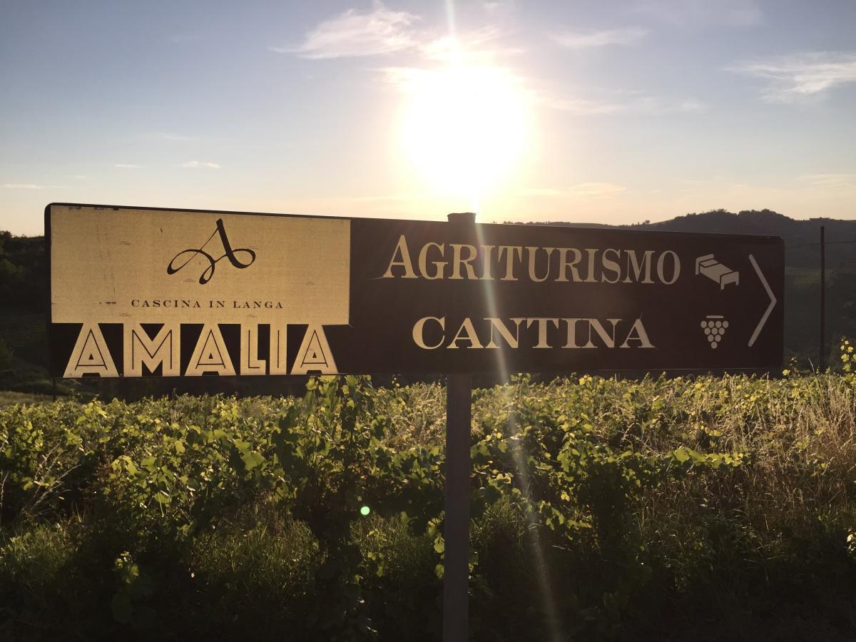 Cantina Amalia